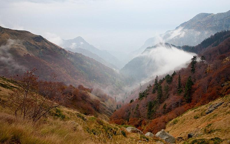 Dzhendema Reserve, Bulgaria