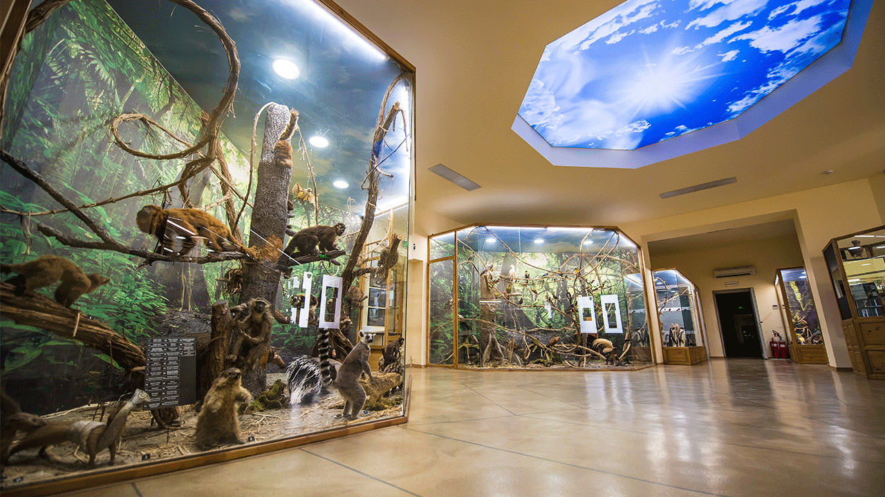 Regional Natural History Museum in Plovdiv