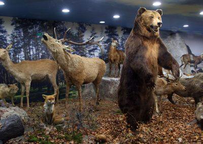 Природонаучен музей Пловдив