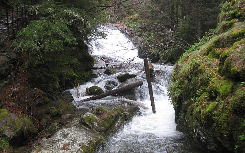 Каньона на водопадите край Смолян