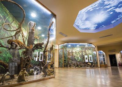 Природонаучен музей в Пловдив
